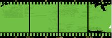 Free Green Filmstrip Royalty Free Stock Images - 16519329