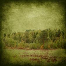 Free Grunge Autumn Background Stock Images - 16519374