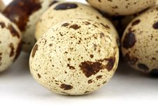 Free Quail Eggs Stock Image - 16520181