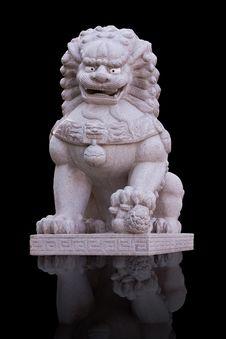 Free Lion Stature Stock Photo - 16521420