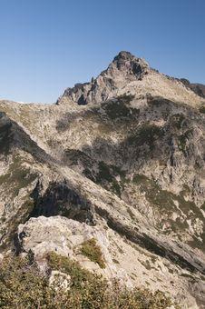 Free Corsica Stock Photography - 16524902