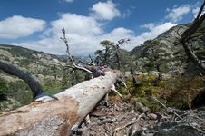 Free Hiking At Corsica Royalty Free Stock Photography - 16524957