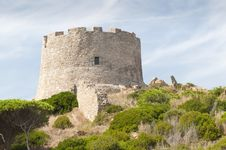 Free Sardinia Royalty Free Stock Photography - 16525027