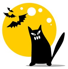 Free Halloween Black Cat Royalty Free Stock Photography - 16525127