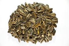 Free Sunflower Seeds Isolated On White Background Royalty Free Stock Photos - 16525328