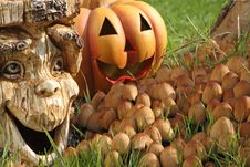 Free Halloween Decoration. Royalty Free Stock Images - 16527029