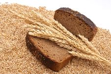 Free Bread With Wheat And Ears Royalty Free Stock Photography - 16527067
