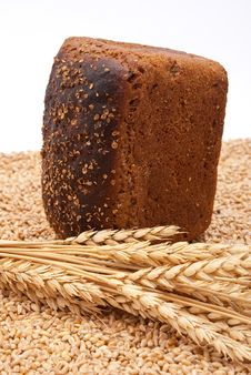Free Bread With Wheat And Ears Stock Photo - 16527100