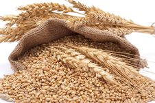 Free The Scattered Bag With Wheat Royalty Free Stock Photo - 16527195