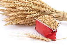 Free Red Purse With Wheat Ears Stock Photography - 16527222