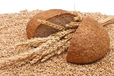 Free Bread With Wheat And Ears Royalty Free Stock Image - 16527286