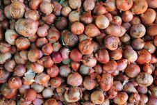 Free Red Onions Royalty Free Stock Image - 16527616