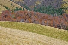Free Autumn Hillsides. Stock Photos - 16527803