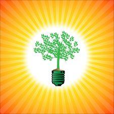 Free Green Tree Stock Photography - 16528072