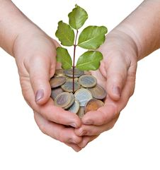 Free Palm With A Tree Growing From Coins Stock Image - 16528201