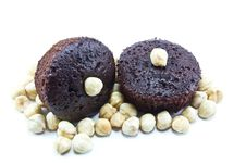 Free Chocolate Muffins Stock Image - 16528871