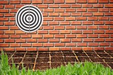 Free Target On Brickwall Stock Photos - 16529713
