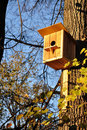Free Starling-house. Stock Photos - 16531073