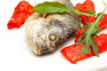 Free Roasted Fish With Garnish Stock Images - 16538674