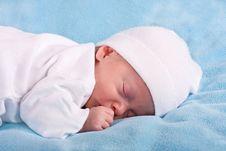 Free The Sleeping Kid Stock Photos - 16530673