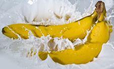 Free Banana Stock Photo - 16534370