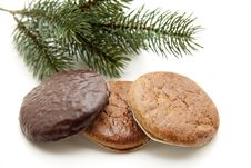 Free Nut And Chocolate Gingerbread Stock Image - 16536961