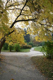 Free Autumn Landscape Stock Photo - 16537610
