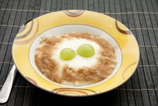 Rice Pudding With Cinnamon Royalty Free Stock Photo