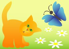 Free A Cat And A Butterfly Stock Photo - 16539400