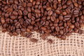 Free Coffee Beans Stock Photography - 16540542
