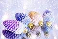Free Decorative Pine Cones Royalty Free Stock Photography - 16544517