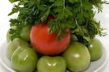 Free Tomatos And Fresh Herbs Royalty Free Stock Photo - 16540485