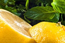 Free Sliced Lemon And Mint Royalty Free Stock Photos - 16540578
