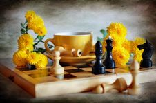 Free Chess And Chrysanthemums Royalty Free Stock Image - 16540636