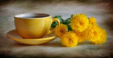 Free Tea With Chrysanthemums Stock Photography - 16540752