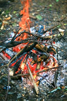 Holidays In The Woods. Bright-burning Fire Royalty Free Stock Photos