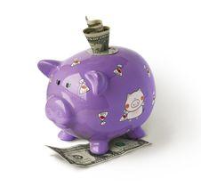 Piggy Moneybox With Money Stock Photos