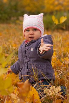 Free Autumn Baby Royalty Free Stock Photo - 16542825