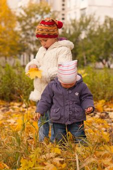 Free Children Playing In Autumn Stock Photos - 16542913
