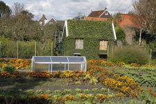 Free Overgrown Barn Stock Photo - 16545250