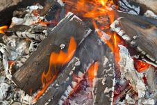 Free Campfire Royalty Free Stock Image - 16546846