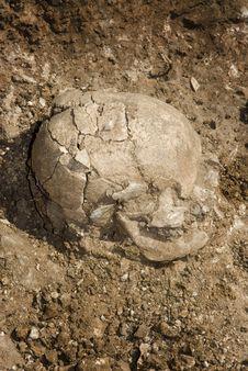 Free Grave Of Human Skeleton Royalty Free Stock Image - 16547306
