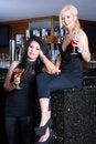 Free Two Beautiful Girls In Bar Stock Photo - 16554680