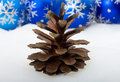 Free Pine Cone And Christmas Decorations Royalty Free Stock Image - 16557096