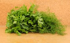 Free Parsley And Celery Stock Photos - 16551113