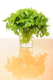 Free Parsley Stock Photography - 16551152
