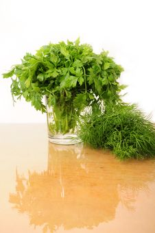 Free Parsley And Celery Stock Images - 16551194