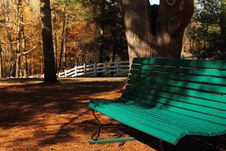 Free Park Bench Stock Photography - 16551522