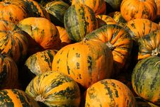 Free Pumpkins Stock Photography - 16553022