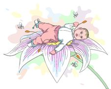 Baby On The Flower - Vector Stock Photo